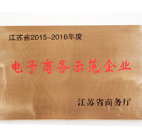 江苏省电子商务示范企业